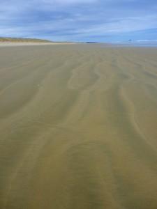 90 Mile Beach 045