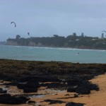 Kite-surfers at Takapuna