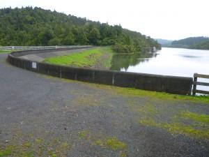 Cossey Dam