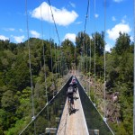 Marius and Etienne on a Timber Trail suspension bridge